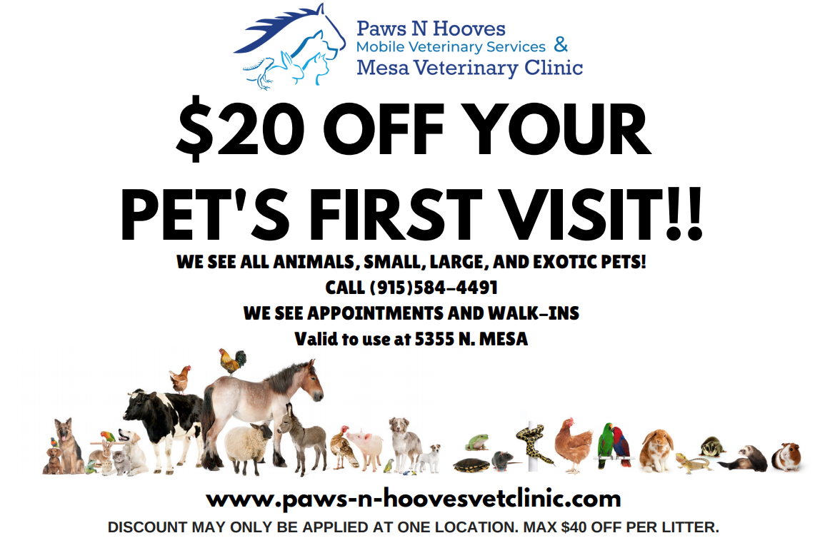 New Clients Mesa Veterinary Clinic Paws N Hooves Mobile Vet